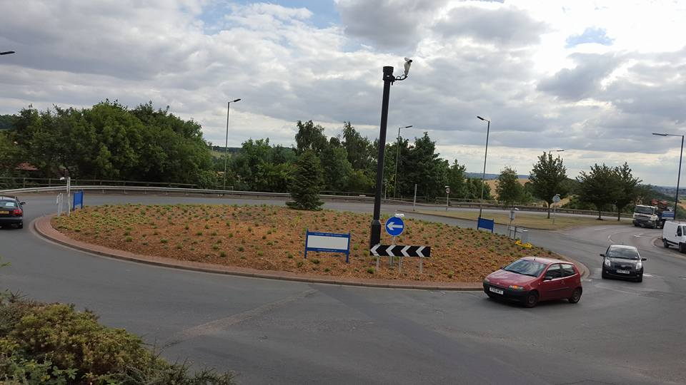 Adwick Road Roundabout Planting Work Completed
