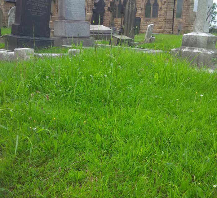 Mexborough Cemetery in Neglected State