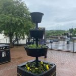 Town Centre Planters Replenished